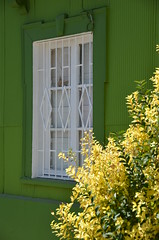 green house (Hayashina) Tags: chile light green window southamerica valparaiso hww