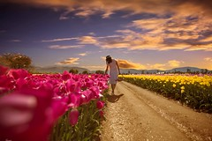 Tulip Field (Janey Song) Tags: flowers sunset people girl clouds tulips tulipfield vancouvercanada ef1635mmf28liiusm canon5dmarkiii