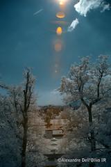 Bienne_DSC7905 (achrntatrps) Tags: trees light luz forest ir licht nikon arboles photographer suisse lumire arbres bern wald berne fort biel photographe baume bienne forst hoyar72 lachauxdefonds 720nm infrarouges d5300 dellolivo alexandredellolivo