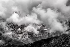 dans la brume (flo73400) Tags: bw fog montagne alpes landscape nb paysage tumasbiencassendeuxsurcecoup tiensjereviensjustepourmetorturerdavantagesalet