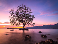 Alor (sandilesmana28) Tags: pink orange cloud sun beach water stone speed sunrise wonderful landscape island slow ngc wave alor