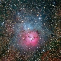 M20-Trifid-T3-50x300s (michael.hultstrom) Tags: stars astro nebula astrophotography astrophoto m20 trifid pixinsight itelescopenet itelescope
