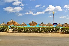 Aruba 2016 (Lee Armstrong Jones) Tags: aruba caribean holiday beach sky sea paradise nature ocean canon 5d mkiii sunset beautiful vacation ilovearuba dutch island sand bluesea 24105mm 100400mm tree druifbeach tamarijn palmbeach flickrtravelaward caribbean arubacaribeanholidaybeachskyseaparadisenatureoceancanon5dmkiiisunsetbeautifulvacationilovearubadutchislandsandbluesea24105mm100400mmtreedruifdruifbeachtamarijnflickrtravelaward blue treeflickrtravelaward caribbeanholiday
