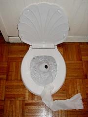 Toilet #6