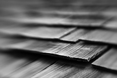 Lifting (belleshaw) Tags: wood roof blackandwhite blur lensbaby shingles grain composer losriosrancho oakglenca