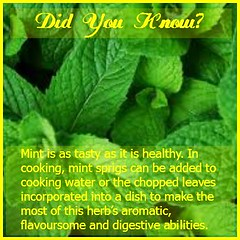 Did You Know Mint Good for You? \u003C\u003CLike it>> if you love cooking! (moramo111) Tags: foods high healthy protein