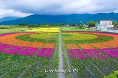 Harry_10075,,,,,,,,,,,,,,,,,,, (HarryTaiwan) Tags: taiwan    d800                   harryhuang     hgf78354ms35hinetnet