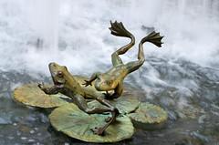 Frogger (Patrick Costello) Tags: sf sanfrancisco california sculpture usa fountain pond frogs transamericapyramid marktwain redwoodpark anthonyguzzardo