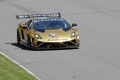 Number 18 Lamborghini Gallardo LP 570-4 Super Trofeo driven by Cooper MacNeil (albionphoto) Tags