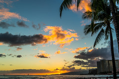 Waikiki Sunset lll (fate atc) Tags: color beach water hawaii surf palmtree tropical waikikisunset