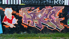 Pace with added char (www.graffiti-denbosch.nl) Tags: pace