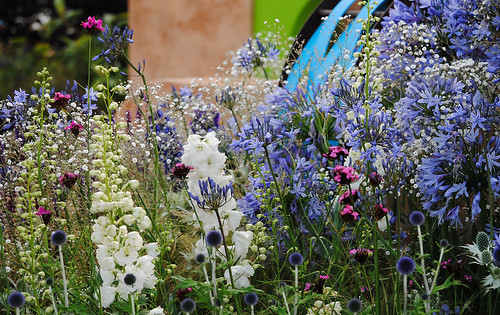 The Ecover Garden - Hampton Court Flower Show