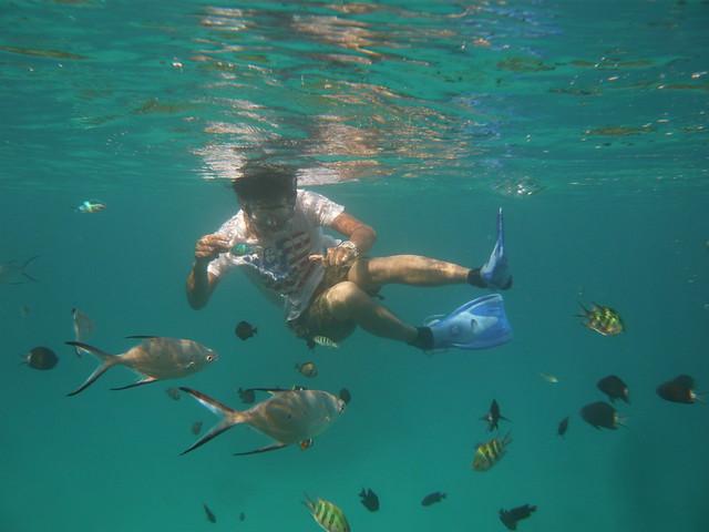潜るとそこにはお魚パラダイス☆ 古座間味ビーチ