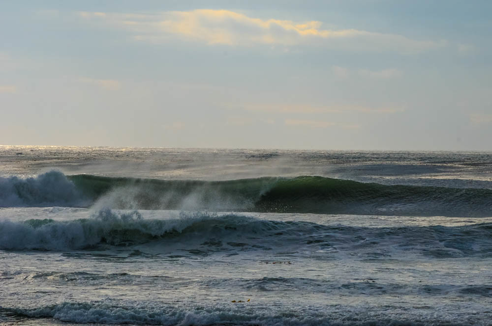 surfing research paper Surfers are more likely to carry antibiotic-resistant e coli bacteria than a  the  new paper, published in the journal environment international,.