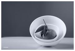 (Ana Lukascuk) Tags: bw orange plant black leave kitchen monochrome tangerine fruit still gray plate bowl clementine