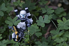 Commando (Kris Kosta) Tags: b trooper scale nature forest t toy soldier army outdoors star j starwars cool war republic y action o d g c w small delta mini s x m special h v f r e u clones figure p z wars squad q veteran clone clovers 62 forces troop commando scorch