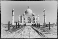Agra IND - Taj Mahal 03