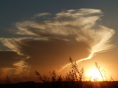 (IgorCamacho) Tags: sunset summer brazil sun storm sol nature paraná weather brasil clouds natureza southern nuvens verão tempo nube sul anoitecer anvil clima tempestade