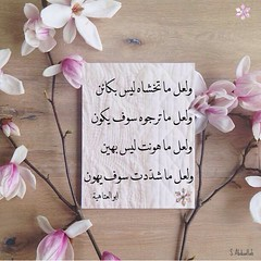 Poetry    (nooralkalemat) Tags: life pink design poetry poem live muslim islam religion saying poet be problems  hopeful   hardship         arabiclanguage         alkarb