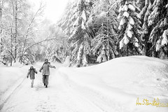 Joy of winter! (Kvervil) Tags: road winter girls snow tree fog forest happy eos cano canoneos5dmarkiii eos5dmarkiii vision:mountain=0519 vision:outdoor=0981