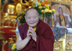 SColvey-7184 (karmajinpawangmo) Tags: ktd amitabha khenpokartharrinpoche march2014