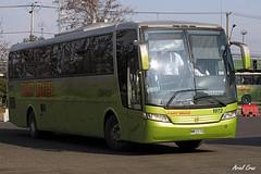 Tur Bus en Santiago   Busscar Vissta Buss LO - Mercedes Benz / NN7112 (Recarrozado) (Administracionytransportes.cl - Ariel Cruz Pizarro) Tags: chile bus verde holding turbus mnibus interurbano jedimar