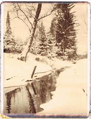 Rynynoja (Maija Karisma) Tags: polaroid instant pola expiredfilm peelapart polaroid180 100chocolate littlebitbetterscan