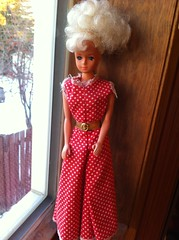 Thrift Store Find: ?? (LaLaLaberries) Tags: store doll random thrift