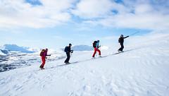 Rdtind (vetleneven) Tags: skiing rando backcountry troms topptur rdtind movementski