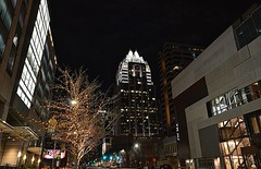 Congress Ave and Frost Bank at night (elnina999) Tags: city travel bridge blue sunset sky urban usa reflection building bird tower water horizontal skyline architecture austin river landscape town office high scenery colorado downtown solitude cityscape texas exterior place state famous scenic sunny landmark center scene structure clear business greenery rise tranquil capita nikond5100