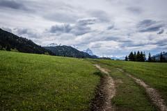 Gerold_2790.jpg (Comperia) Tags: blumen wandern garmisch gerold geroldsee
