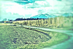 countryside (camerito) Tags: way landscape austria countryside sterreich flickr krnten carinthia landschaft j4 lndlich nikon1 camerito