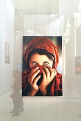 Afghan Girl (Giulia Gangemi) Tags: italy girl beautiful photo gallery potrait turin reportage afghangirl stevemccurry venaria vscocam