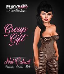 GROUP GIFT - NET CATSUIT (Priscila Ledger) Tags: new girly omega group event gift priscila lovely tmp ledger maitreya slink blackhaus