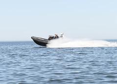 160524-N-JY474-059 (CNE CNA C6F) Tags: sailors eod lithuania nato ordnance multinational explosiveordnancedisposal klaipedia partnershipforpeace latviannavy openspirit2016