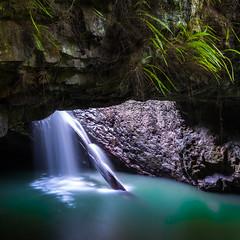 (murlito) Tags: waterfall naturalbridge queensland goldcoast springbrooknationalpark fujixt1 xf1024