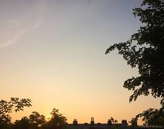 06:22 29.05.16 (jpmm) Tags: amsterdam clouds sunrise wolken cirrus zuid 2016 cirrostratus