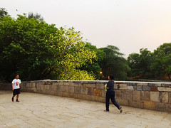 An Amaltas a Day Keeps the Doctor Away (Mayank Austen Soofi) Tags: summer tree yellow garden golden evening exercise delhi et walkers suns lodhi walla bridhe amaltas athpula