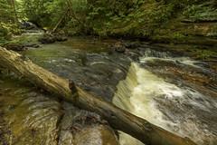 Chapel Falls Area (focus stacked) (2016-06-18) (bechtelsf) Tags: landscape outdoors waterfall moss log nikon stream angle michigan wide upperpeninsula picturedrocksnationallakeshore chapelfalls focusstacked d810 nikon1424mm