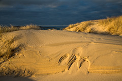 Nisabost beach (Sunshinenshadows) Tags: sand beach settingsun lateafternoon spring dunes grasses isleofharris