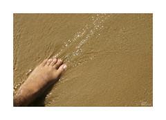 Playeando... (ngel mateo) Tags: ngelmartnmateo ngelmateo playa playadelabarrosa cdiz espaa andaluca arena agua pie sand water foot costadelaluz chiclanadelafrontera summer verano playeando
