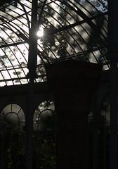 Palacio de Cristal - Madrid (extrasmooth) Tags: madrid de cristal palacio mdridcitymola
