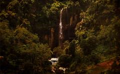 Falling (Saint-Exupery) Tags: leica fall srilanka cascade cascada