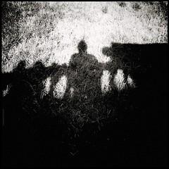 Demonios en el jardn / Demons in the garden (Aviones Plateados) Tags: samsung galaxysiii s3 android mobile cell phonecamera smartphone square 500x500 lomo camerazoomfx holga gothic shadow garden jardin misterio mystery terror horror demons spooky ground