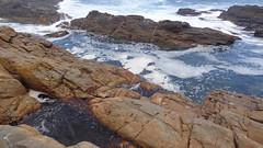 Coastline (Rckr88) Tags: ocean africa travel sea nature water rock southafrica outdoors coast rocks waves south wave coastal coastline gardenroute tsitsikamma easterncape rockycoastline tsitsikammanationalpark