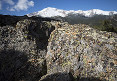 28 May 16 Pikes Peak Granite (ethanbeute) Tags: rock forest colorado hiking hike snowcapped trail coloradosprings granite summit lichen cascade pikespeak utepass pikenationalforest pikespeakgranite heizertrail