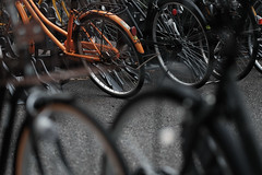 DSCF4698.jpg (nekoma15) Tags:      bicycle parking