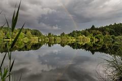 Rainbow reflection (Sebo23) Tags: regenbogen rainbow reflections reflektionen gttingen gttingersee spiegelungen kontrast canon6d canon24704l