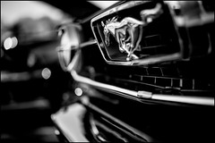 Mustang. (Mroovac) Tags: blackandwhite bw ford car zeiss classiccar vintagecar mustang fordmustang carshow 2016 canon6d makroplanar502ze zeissmakroplanar50mmf2ze