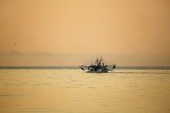 St. Simons Island (Regina/acrphoto) Tags: sunrise shrimpboats stsimonsisland beachsunrise goldenisles